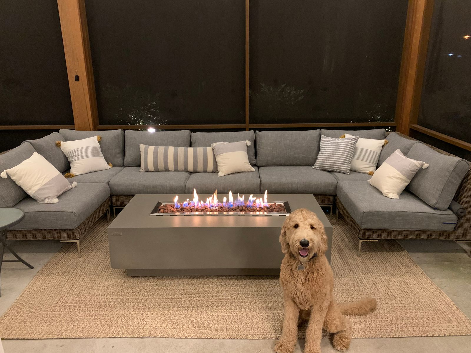 Dog sitting in front of outdoor sectional