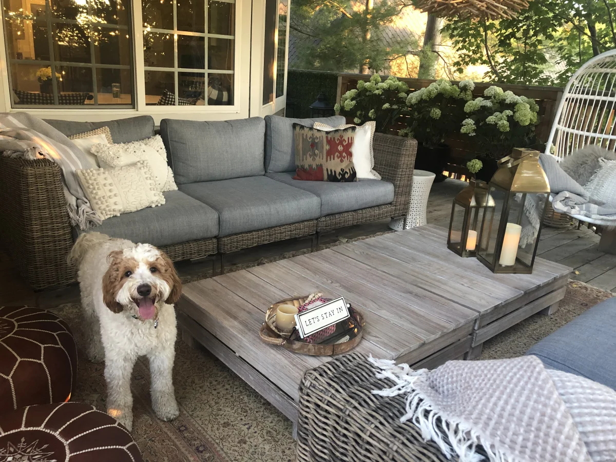 Outdoor furniture with wood table and cute dog